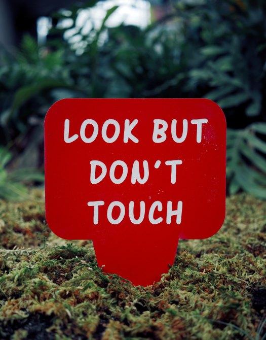 no tocar.jpg